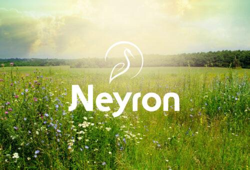 Réalisation du logotype de la commune de Neyron située dans l'Ain